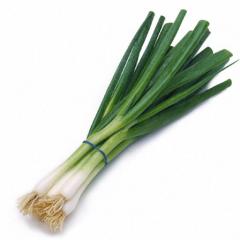 Green Onions and Scallions – Are They the Same?