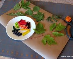 Leaf Rubbing Placemat