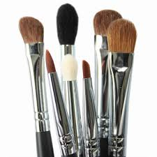 Vegan Makeup Brushes – Where Are They?