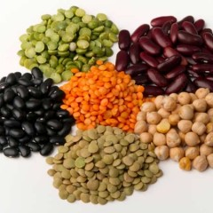 Vegan Protein Allergies and Constipation