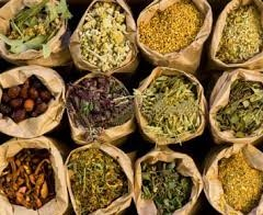 Healing Herbs for the Postpartum Period