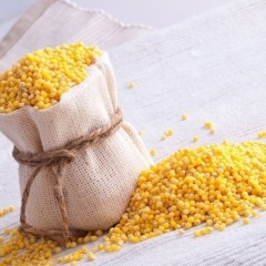 Millet—Not Just for the Birds