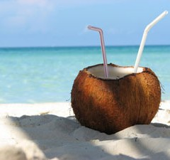 Coconut Power