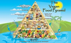 Teaching Good Eating to Children – A Lesson in Vegan Food Pyramid Building